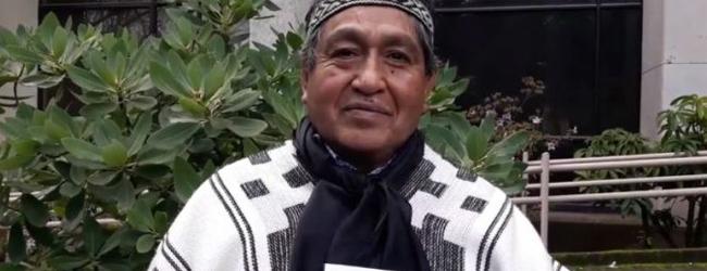 Lanzan primer diccionario monolingüe de mapudungun pewenche en Santiago