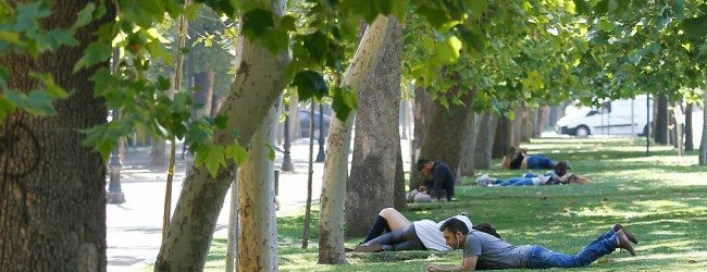 Santiaguinos de 30 comunas viven a menos de dos km de un parque